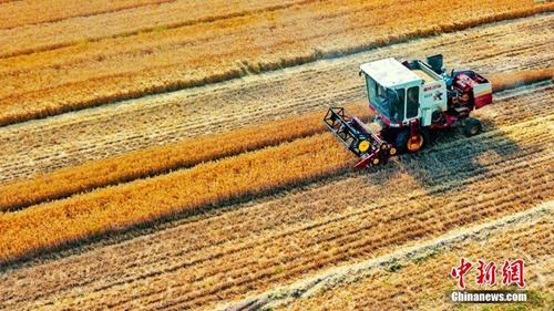 农机企业迎利好!国务院:引导金融机构加大信贷投放